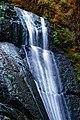Wolf Creek Falls (Douglas County, Oregon scenic images) (douDA0049).jpg