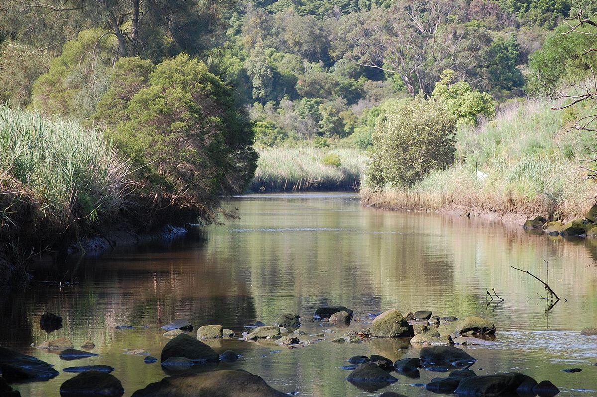 Image result for freshwater creek mulgoa