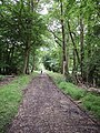 Woodland track from Southend into Stonor Park - geograph.org.uk - 886556.jpg