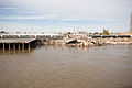 Wrecked Wharf New Orleans.jpg
