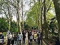 Wuhan University 20180406 091938.jpg