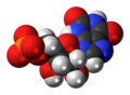 Xanthosine monophosphate anion spacefill.png