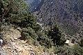 Xiloskalo (Xyloskalo) from path to Kallerghi, 076241.jpg