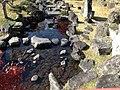 Yabakeimachi Oaza Oshima, Nakatsu, Oita Prefecture 871-0431, Japan - panoramio (13).jpg