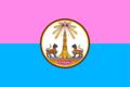 Yasothon provincial flag.png