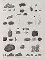 Zoologie. Zoophytes. Éponges charnues, Éponges à piquans (NYPL b14212718-1268613).jpg