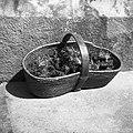 """Korenov seme v sjau?nci"" (košara s korenovim semenom). Lastnik pri Škulju, Kaplanovo 1960.jpg"
