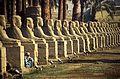 Ägypten 1999 (243) Tempel von Luxor- Sphingen-Allee (28244961825).jpg