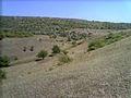 Балка Північна Червона 04.jpg