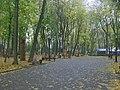 Брянск Парк А К Толстого (осень).jpg