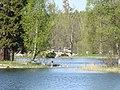 Дворцовый парк Гатчины-Palace Park in Gatchina - panoramio (7).jpg