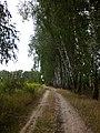 Дорога на кладовище - panoramio (1).jpg