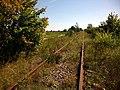 Забута залізниця - panoramio - EugeneLoza.jpg