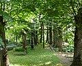 Кладбище Цепурниеку-1 (le cimetière Cepurnieku) - panoramio.jpg