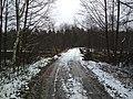 Мост у посёлка Иванищи.jpg
