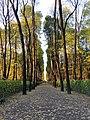 Осень, сад на дворцовой набережной.jpg