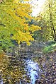 Парк Чекмана у місті Хмельницькому. Фото 1.jpg