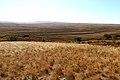 Речка Кураша. Вид в юго-западном направлении - panoramio.jpg
