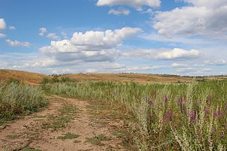 Steppe - Steppe in Russia