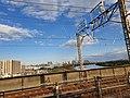 上越新幹線の窓から.jpg