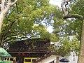 啜茗轩茶楼 - panoramio.jpg