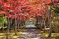 平岡樹芸センター(Hiraoka arboriculture center) - panoramio.jpg