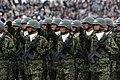 平成22年度観閲式(H22 Parade of Self-Defense Force) (10219358976).jpg