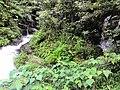 惠州博罗红花嶂越野穿越-大救援20140524-25 - panoramio (10).jpg