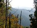 滋賀県多賀町屏風集落への林道からの眺望 - panoramio.jpg