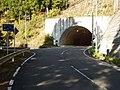 箕川トンネル - panoramio.jpg
