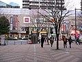 赤羽(2011-03-06) - panoramio.jpg