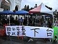 野草莓運動(抗議修改集遊法) - panoramio - Tianmu peter (10).jpg
