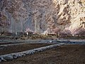 阿克其格村 - Akaqiger Village - 2015.04 - panoramio.jpg