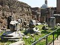 09792 - Rome - Roman Forum (3505066854).jpg