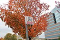 104.DullesCorner.HerndonVA.28October2012 (8140355435).jpg