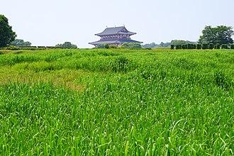 Heijō-kyō - Heijō-kyō ruins