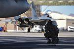 144th FW flies high in Nellis skies 160202-Z-AH552-079.jpg