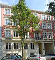 18564 Vereinsstraße 54b.JPG