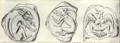1911 Britannica - Aegean - Minotaur.png