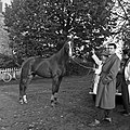 1958 visite d'une délégation INRA au Haras du Pin Cliché Jean Joseph Weber-26.jpg