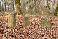 2011-02-13-borne-3-puiss-1.jpg