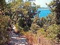 2011-07-09. Port Cros. (9).jpg