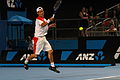 2011 Australian Open IMG 6448 (5448449590).jpg