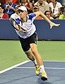 2013 US Open (Tennis) - Kevin Anderson (9648684044).jpg