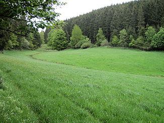 Nice (upper course) north of Lederbach