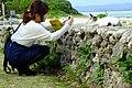 2015-12-20 Kondoi Beach Taketomi-Island,Okinawa コンドイ浜(沖縄県八重山郡竹富町竹富)DSCF5542.jpg