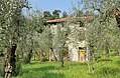 2017-04-10 04-14 Gardasee 021 Malcesine, Monte Baldo (34345169256).jpg