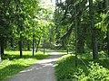 2510. Лаппеенранта. Старый парк.jpg