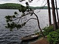 34 Classic Algonquin Scene on Lake Opeongo.jpg
