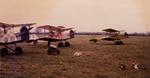 3 Lynn Garrison SE5s for wallpaper paste ad 1973.png